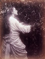 Mary Ann Hillier, by Julia Margaret Cameron.jpg