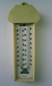 Max Min Thermometer.JPG