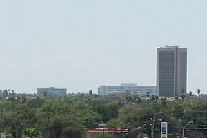 McAllen, Texas - McAllen Skyline, on far right Chase Neuhaus Tower in Downtown.
