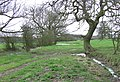 Meadows-Grazing Land , Lutley, Staffordshire Way - geograph.org.uk - 367839.jpg
