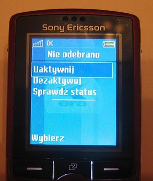 Menu of USSD application-cell phone