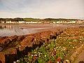 Millport, floral display on Marine Parade - geograph.org.uk - 1540102.jpg