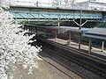 Minami-Otaru Station platform.jpg