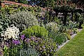 Mixed border and trellis, Essex, England 01.jpg