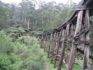 Puffing Billy Railway - The Monbulk Creek Trestle Bridge.