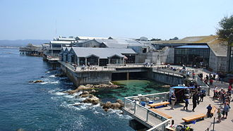 Monterey, California - Monterey Bay Aquarium