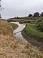 Moore Creek at Natural Bridges State Beach.jpg