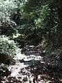 Mount Athos- ancient plastered path 3.jpg