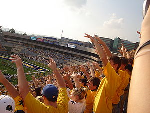 Mountaineer Maniacs at the 2008 home game agai...