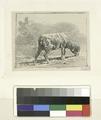 Moutons paissant (NYPL b14917524-1159704).tiff