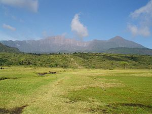 Mt Meru from Momella gate 2006-02-12.jpeg