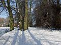 Muchall Park, Penn, Wolverhampton - geograph.org.uk - 1150012.jpg