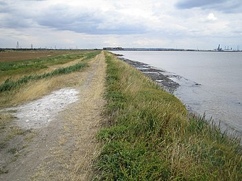 English: Mucking Flats. The flood defence wall...