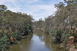 Ngooraialum - Goulburn River at Murchison.