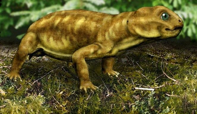 Myosaurus