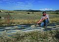 NRCSMT01018 - Montana (4887)(NRCS Photo Gallery).jpg