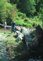 NRCSOR00050 - Oregon (5795)(NRCS Photo Gallery).tif