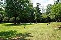 Nacogdoches August 2017 40 (Zion Hill Baptist Church Cemetery).jpg