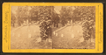 National Military Cemetery, Graves, Nashville, Tenn, from Robert N. Dennis collection of stereoscopic views.png