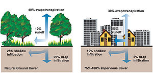 Stormwater - Relationship between impervious surfaces and surface runoff