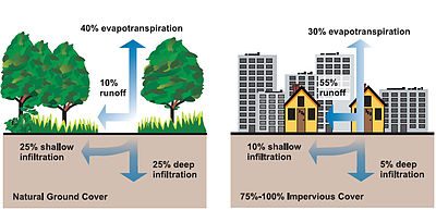 Stormwater - Wikipedia Stormwater Runoff Diagram