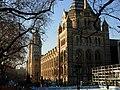 Natural History Museum, South Kensington - geograph.org.uk - 1113994.jpg