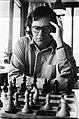 Nederlandse kampioenschap schaken, Leeuwarden 9 Ligterin 10, 11, 12 Ree in acti, Bestanddeelnr 929-6757.jpg