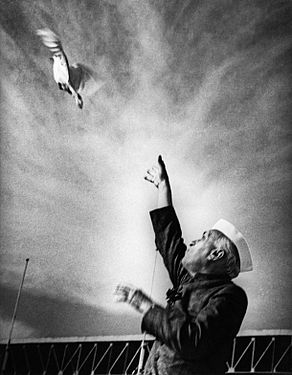 Nehru releasing a dove at a public function at the National Stadium in New Delhi.jpg