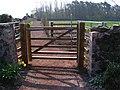 New Gate - New Path - geograph.org.uk - 400319.jpg