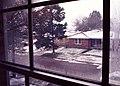 New Orleans SNOW- 232-20th St window- February 1973.jpg