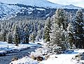New Snow, Tuolumne River, Yosemite 5-15 (19923125003).jpg