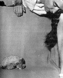 Niah Skull
