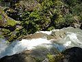 Nooksack Falls Top 2.jpg