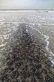 Norderney, Nordstrand -- 2018 -- 0887.jpg