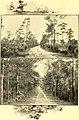 North Carolina and its resources (1896) (14761909316).jpg