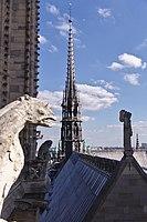Notre-Dame de Paris' spire and roof top.jpg