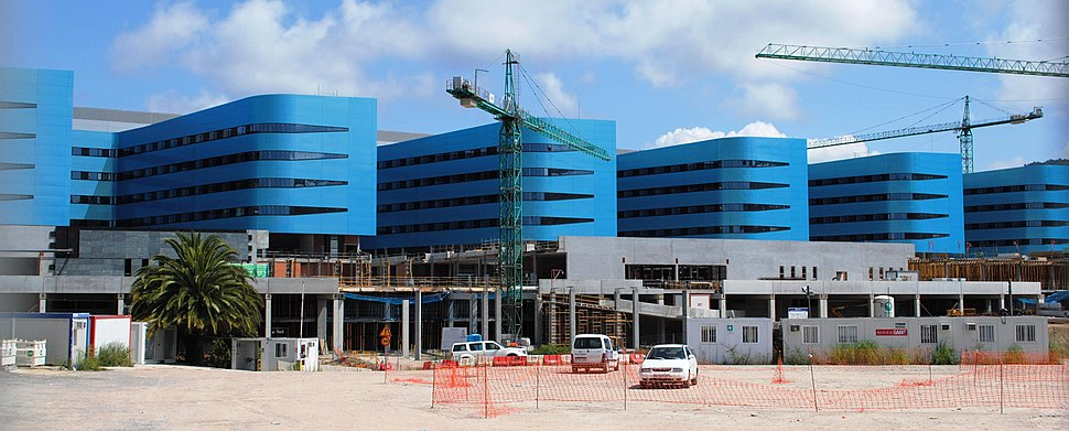 Novo Hospital de Vigo, Luis Vidal