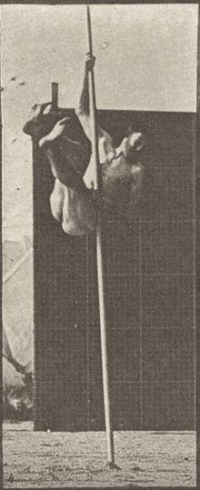 Naked Pole Vaulting Man 87