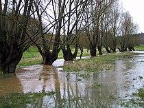 Oison (rivière) en crue.jpg