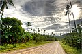 On the road under the tropical Sun - panoramio.jpg