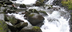 English: Oneonta Creek, Columbia Gorge, Trail #424