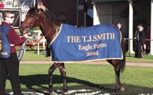 The J. J. Atkins - Outback Prince, winner of the 2004 T J Smith