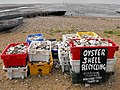 Oyster shell recycling - geograph.org.uk - 1364057.jpg