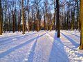 Päikeseline talvepäev Kadrioru pargis.jpg