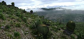 Tehuacán-Cuicatlán Biosphere Reserve - Wikipedia 71739479e53ab