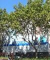 Palau Macaya - rera els arbres i la bastida.jpg