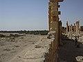 Palmyra (Tadmor), Baal-Tempel (37819449165).jpg
