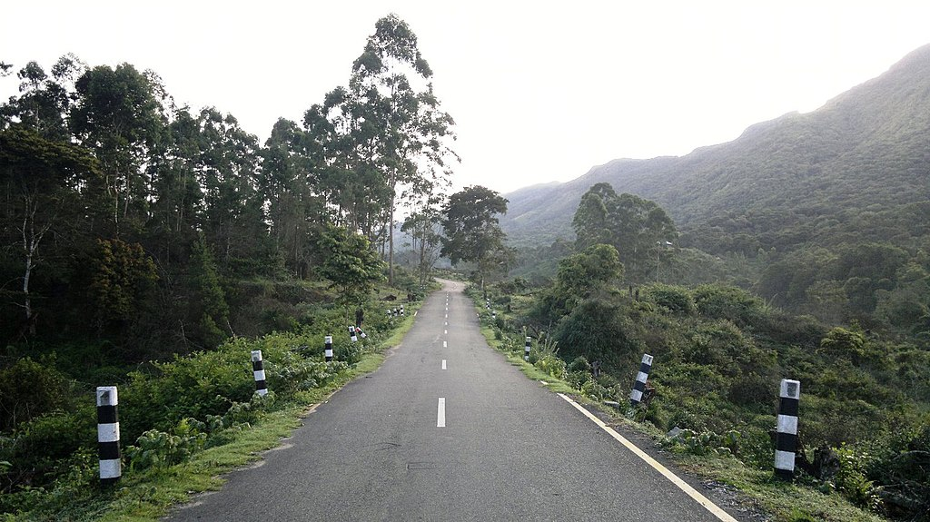 Pampadum Shola National Park, Munnar