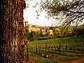Panorama del borgo di Levizzano Rangone.jpg