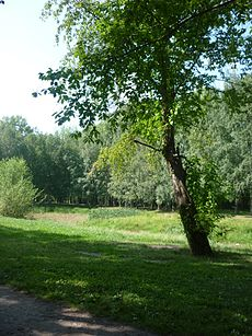 Park dedicated to 50 years of Komsomol 02 Aug 2012 take 03.JPG